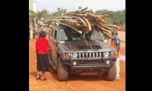 Hummer para carregar bambu